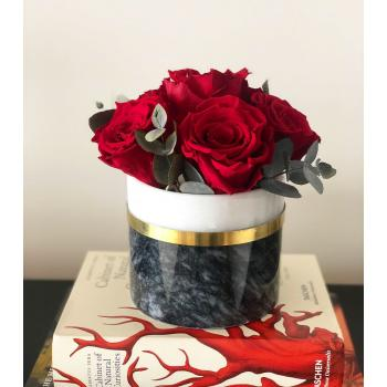 Grace Red passion infinity rose