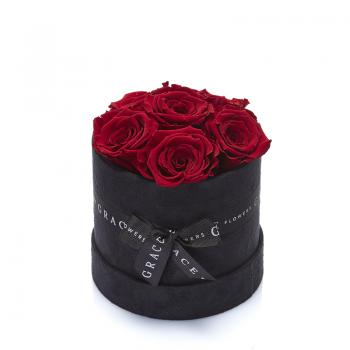 Grace Siyah Kadife Kutuda 6'lı Solmayan Kırmızı Gül